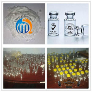 Ipamorelin CAS 170851-70-4 for Energy Homeostasis & Regulation of Bodyweight pictures & photos