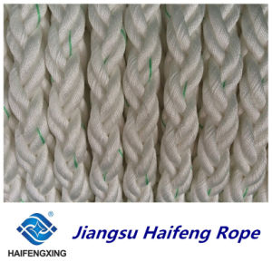 8-Strand PP Rope Quality Certification Mixed Batch Price Is Preferential pictures & photos
