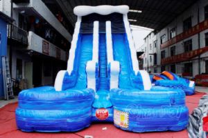 Blue Giant Double Lane Inflatable Water Slide with Pool Chsl661 pictures & photos