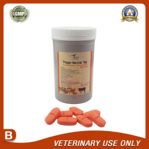 Veterinary Drugs of Levamisole Bolus 1000mg pictures & photos