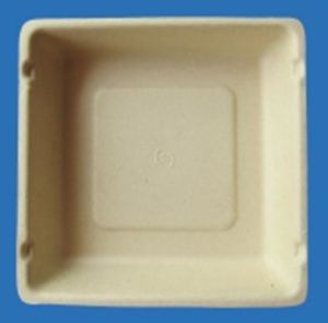 Biodegradable Disposable Bamboo Pulp Food Box with Lid pictures & photos