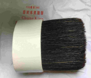 Chongqing Black Bristle