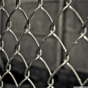 Cheap Price Chain Link Fence pictures & photos