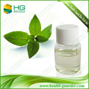 Peppermint Essential Oil & Mint Essential Oil & Peppermint Leaf Extract