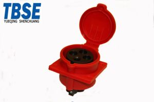 3041601 Industrial socket pictures & photos