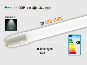 T8 LED Tube pictures & photos