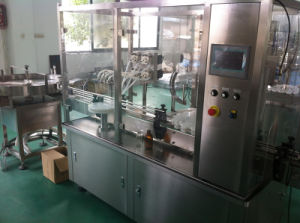 Thg100 Syrup Filling and Capping Machine pictures & photos