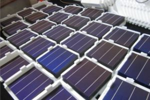 156*140 Polycrystalline Cells with Hight Efficiancy 17.8% and Cheap Price