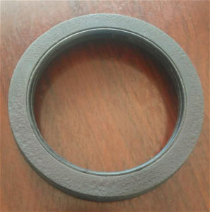 High Quality FKM Oil Seal pictures & photos