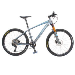 29er Mens Bike Mountain Sale pictures & photos