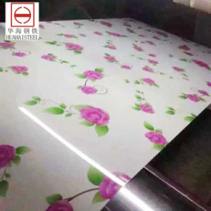 Color Coated Galvanized/Galvalume Steel in Coil/Sheet (tdx52D) Printed Type pictures & photos