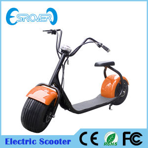 2016 New Lithium Battery Big Tyre Electric Scooter (Esrover E5)