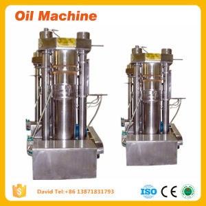 Factory Price Oil Pressing Machine Hydraulic Oil Press Machine pictures & photos