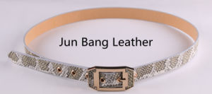 Classic PU Belt in High Quality for Women pictures & photos