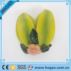 Star Fruit 3D Magnets Cooler Resin Fridge Magnetic pictures & photos