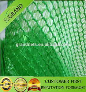 Wholesale Green Agricultural Shade Net pictures & photos
