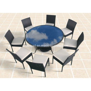 Outdoor / Dining Room Table with 8 Chairs / SGS (8214) pictures & photos