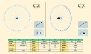 Bicycle Wheel (WDS20) pictures & photos