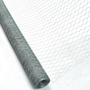 Made in China Galvanized Hexagonal Wire Mesh (HWM) pictures & photos