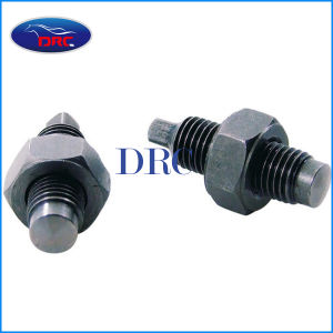 Motor Spare Part Valve Adjusting Screw for Cg125
