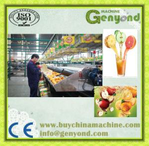 Complete Mango Juice Processing Line pictures & photos