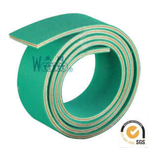 Brief Introduction of Nylon Based Belt pictures & photos