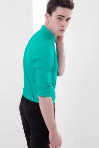 Fashion Stylish Men′s Non-Iron Slim Fit Shirt pictures & photos