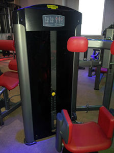 Commercial Gym Equipment Manufactures Muscle Building Machine for Sale pictures & photos