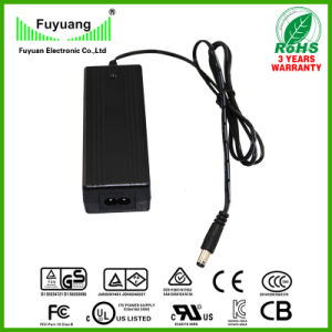 2 Cell Lead-Acid Battery Charger 29V1.5A (FY2901500) pictures & photos