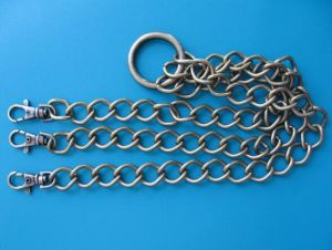 Steel Chain Dr-Z0039 pictures & photos