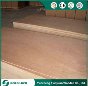 Best Price WBP Furniture Bintangor Commercial Plywood 1220X2440mm pictures & photos