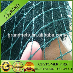Plastic Anti Bird Net From China Factory pictures & photos