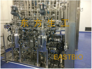 Customized Automatic Stainless Steel Microbial Fermenter pictures & photos