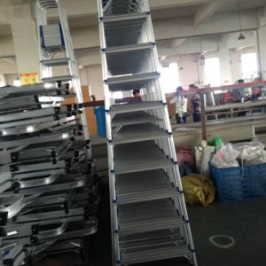 Aluminum Household Ladder (10 steps) pictures & photos