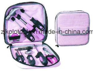 19 PCS Basic Pink Lady Tools for Promotion Gift pictures & photos