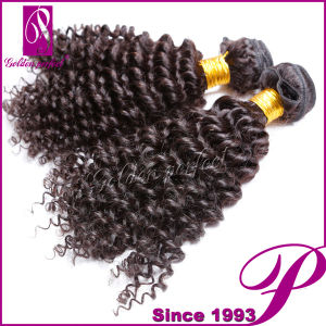Natural Color Virgin Brazilian Hair Weave, Kinky Curly Braiding Hair