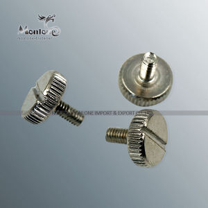 M3-M40 Non Standard Customized Special Fastener, Special Screw (FB029)
