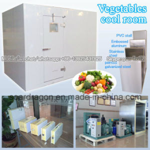 Vegetables Cool Room Cold Room pictures & photos