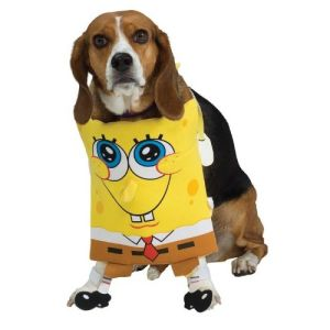 Pet Costumes Cloths for Cat and Dog Gift pictures & photos
