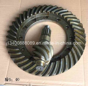 Truck Parts- Crown Wheel Rr for Mitsubishi pictures & photos