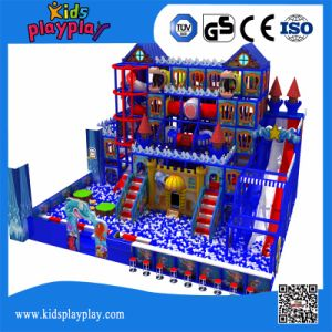 Factory Wholesale Optional Multi Function Indoor Playground pictures & photos