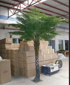 Large Faux Cyathea Trees for Indoor Decoration pictures & photos