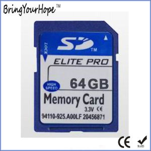SD Micro SD CF Mini SD Memory Card From Shenzhen (2GB TF) pictures & photos