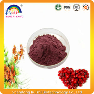 Natural Cranberries Extract Powder for Herbal Extract pictures & photos