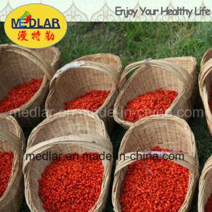 Ningxia Super Fruit Dried Goji Berries (Lycium barbarum) pictures & photos