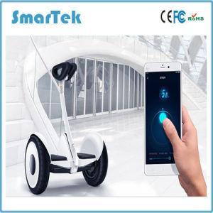 Smartek Bluetooth Nine Bot Mini 2 Wheel Electric Scooter Patinete Electrico No. 9 Smart Balance Wheel Hoverboard Car Magnesium LED Ninebot Scooter S-018 pictures & photos