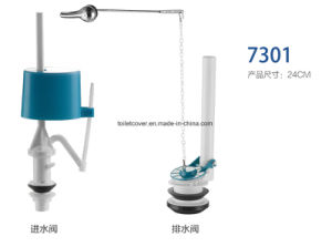 Dual Flush Valve From China Factory pictures & photos