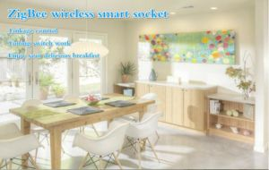 High Quality New Design Wireless Zigbee Smart Home USB Socket pictures & photos
