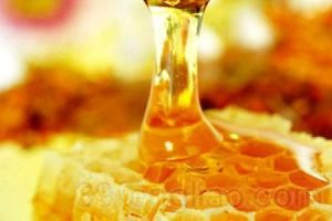 Royal Jelly Extract for Food and Supplement pictures & photos