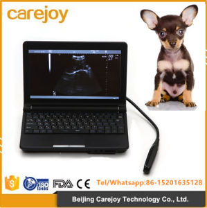 Full Digital Laptop Ultrasound Scanner for Vet Use-Stella pictures & photos